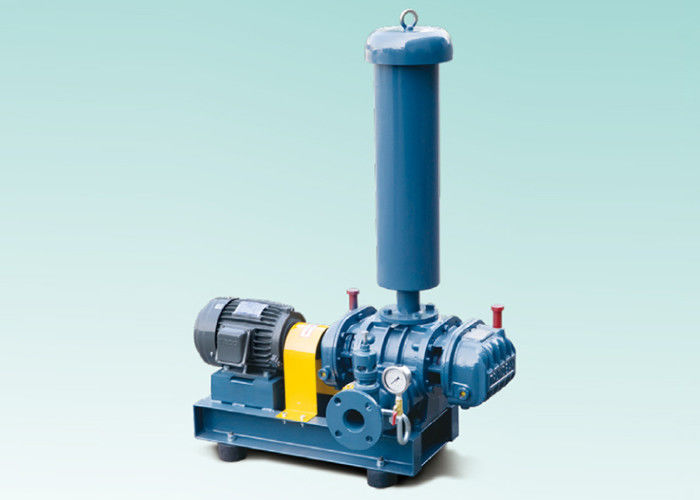 Corrosive / Toxic Gases Transfer Cast Iron Roots Blower Vacuum Pump DN300 Port